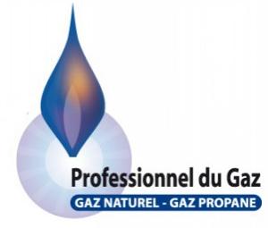 Gaz-Sens89-Ziegler